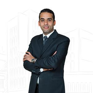 محمود حنفى